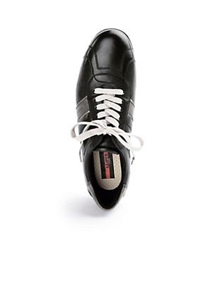 Lloyd - Les sneakers