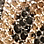 léopard/noir