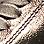 taupe/bronze métallisé